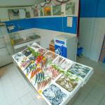 το καβούρι Καταστήματα στα Μουδανιά